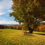 Fall leaves add color to a bright Vermont rural scene