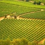 tasting your way through the wine country of Southwest France