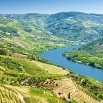 Vineyards in Douro Valley, Portugal
