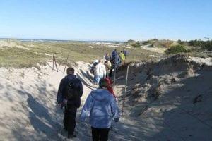 crane beach ipswich walk group