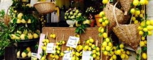 lemons sorrento peninsula italy