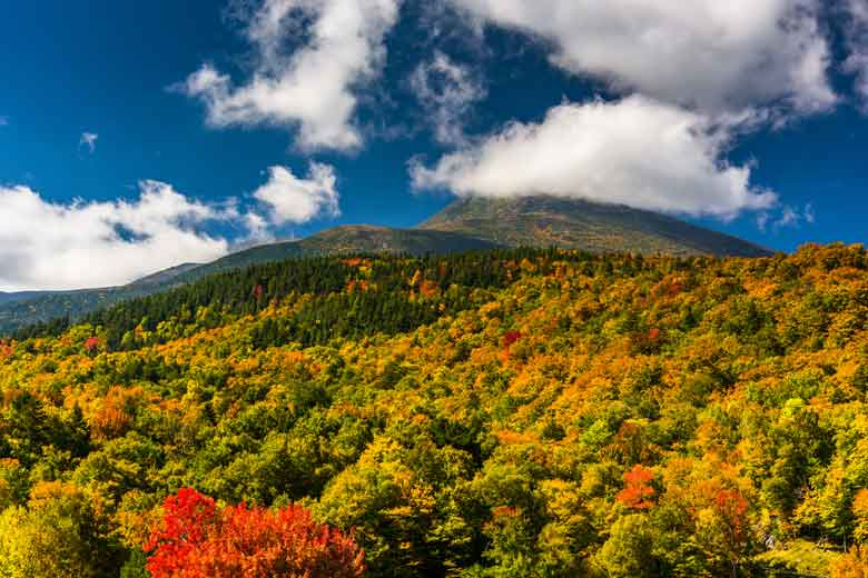 New England Fall Foliage Tours From Boston