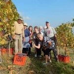 Visiting a vineyard in Northern Italy