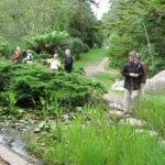 wandering-the-garden-paths-of-ilnaculin-bantry-bay